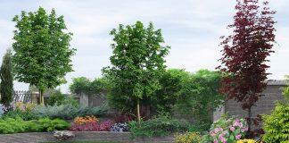 ปลูกต้นไม้ เสริมโชคลาภ